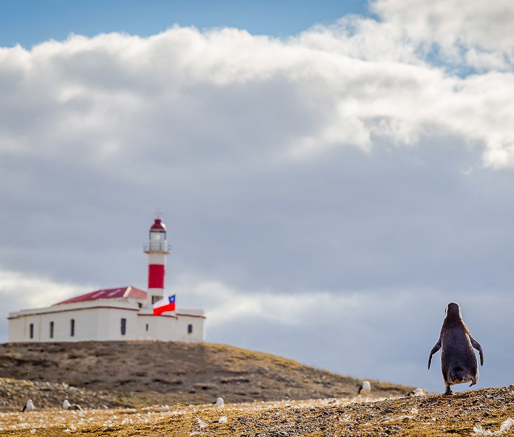 What to do in Punta Arenas, the southernmost city in Chile